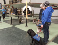 Guide Dogs March AFB